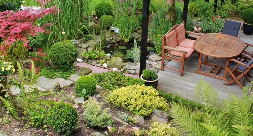 Najważniejsze Porady Jak Urządzić Ogród